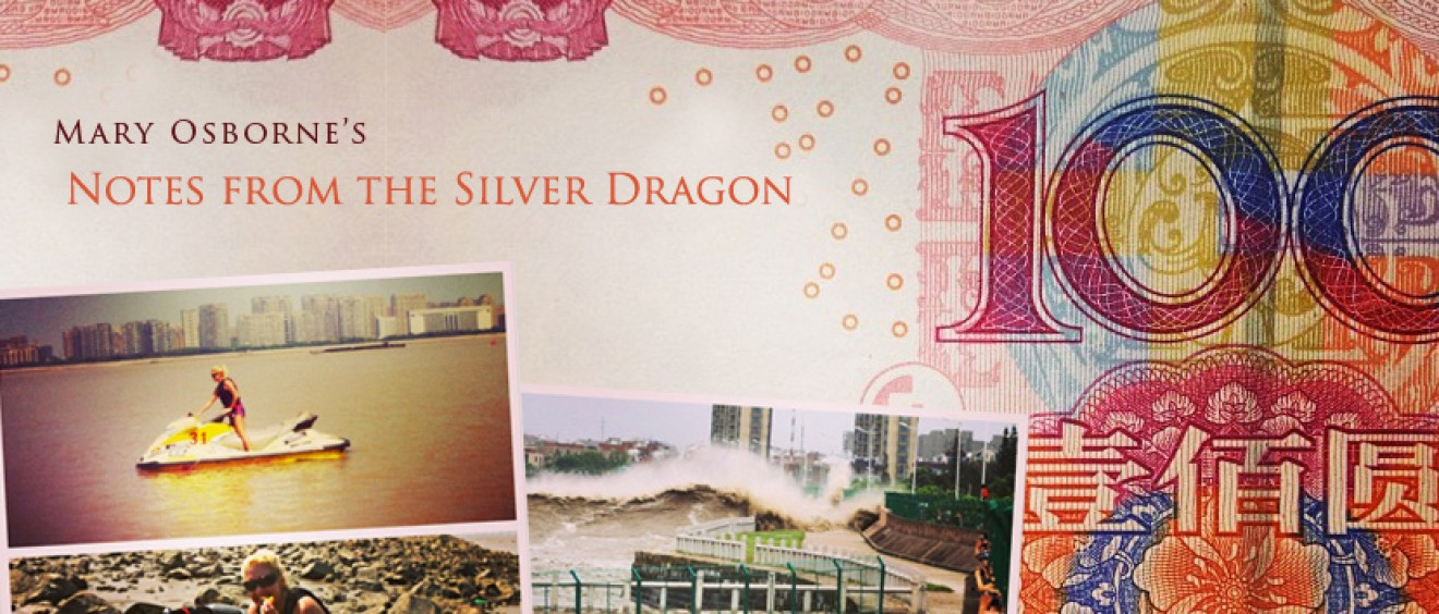 Mary Osborne's Notes from the Silver Dragon