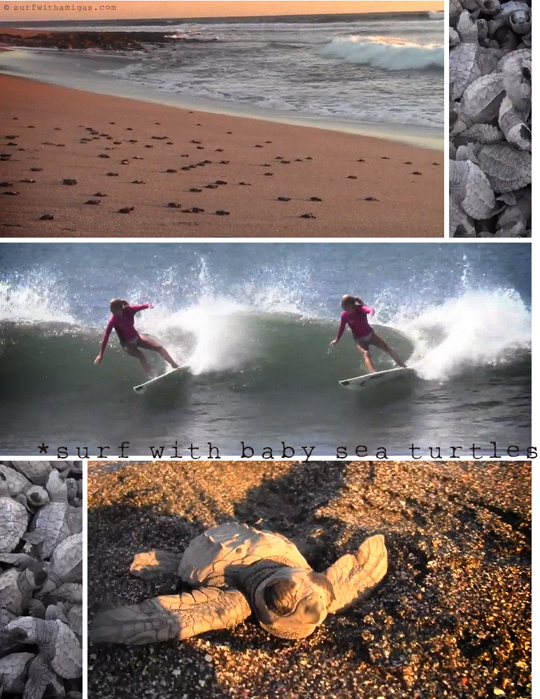 Surf with baby sea turtles in Nicaragua. Holly Beck Obermeyer's roundhouse cutback at Surf With Amigas retreats.